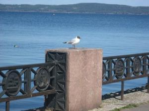 Петрозаводск. Онежское озеро